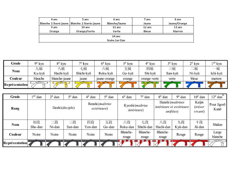 43d6978f29c Les Grades ou Ceintures au Judo - PLANETE JUDO TOURY JANVILLE